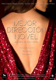 """Cartel de """"Mejor dirección novel"""""""