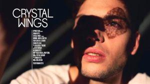 "Cartel de ""Crystal Wings"""